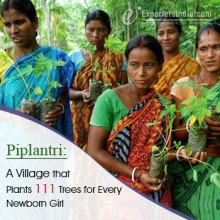 Piplantri A Village Womens Planting Trees